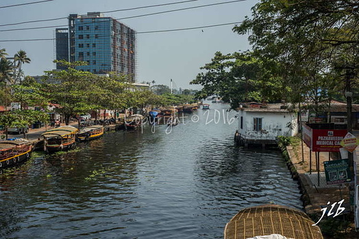 Le GRAND CANAL  - ALLEPPEY -10
