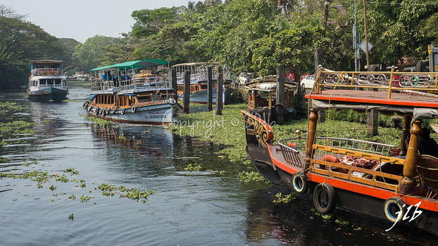 Le GRAND CANAL  - ALLEPPEY -15