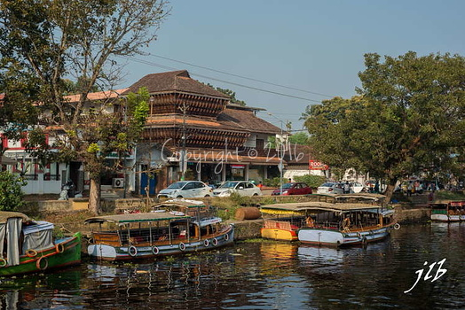 Le GRAND CANAL  - ALLEPPEY -16