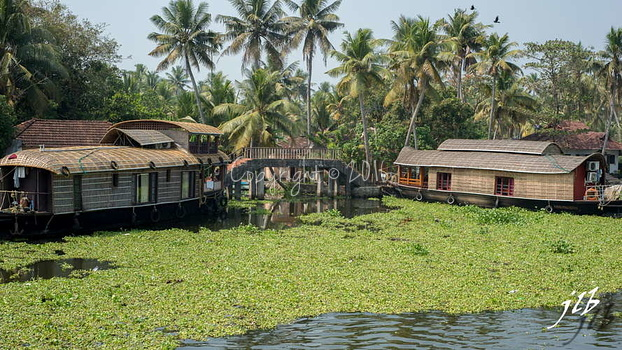 PONTS - ALLEPPEY -2