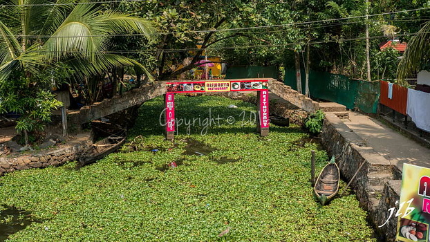 PONTS - ALLEPPEY -3