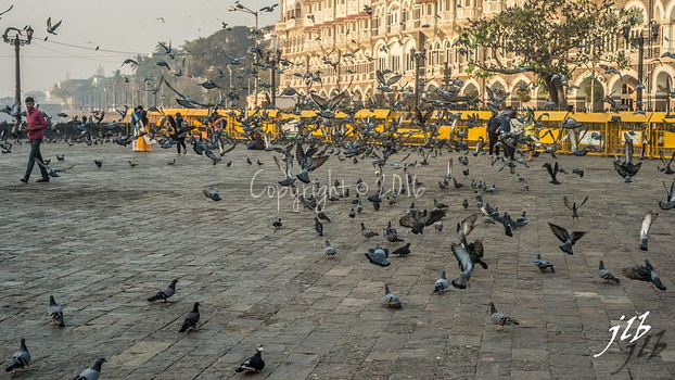 GATEWAY OF INDIA - MUMBAI-10