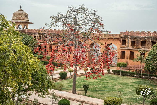 JAIGARH FORT-11