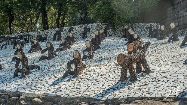 ROCK GARDEN - CHANDIGARH-18