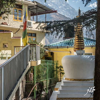 NAMGYAL TEMPLE - McLEOD GANJ-21