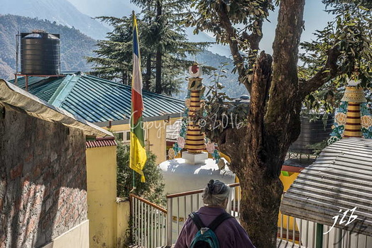 NAMGYAL TEMPLE - McLEOD GANJ-23