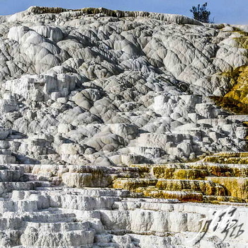 Mammoth hot springs-8